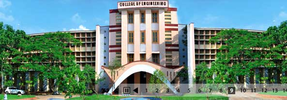 Wildlife Biology civil engineering subjects in college
